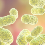 Explore Your Microbiome